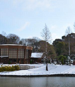 15_028於大公園雪景色280120
