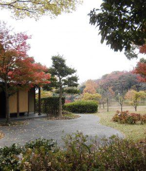 14_025於大公園秋の風景02