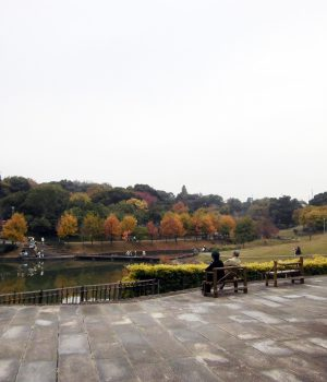13_024於大公園秋の風景