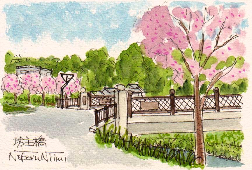 17346_坊主橋