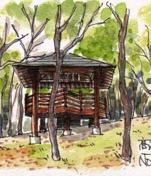 17331_高根の森2